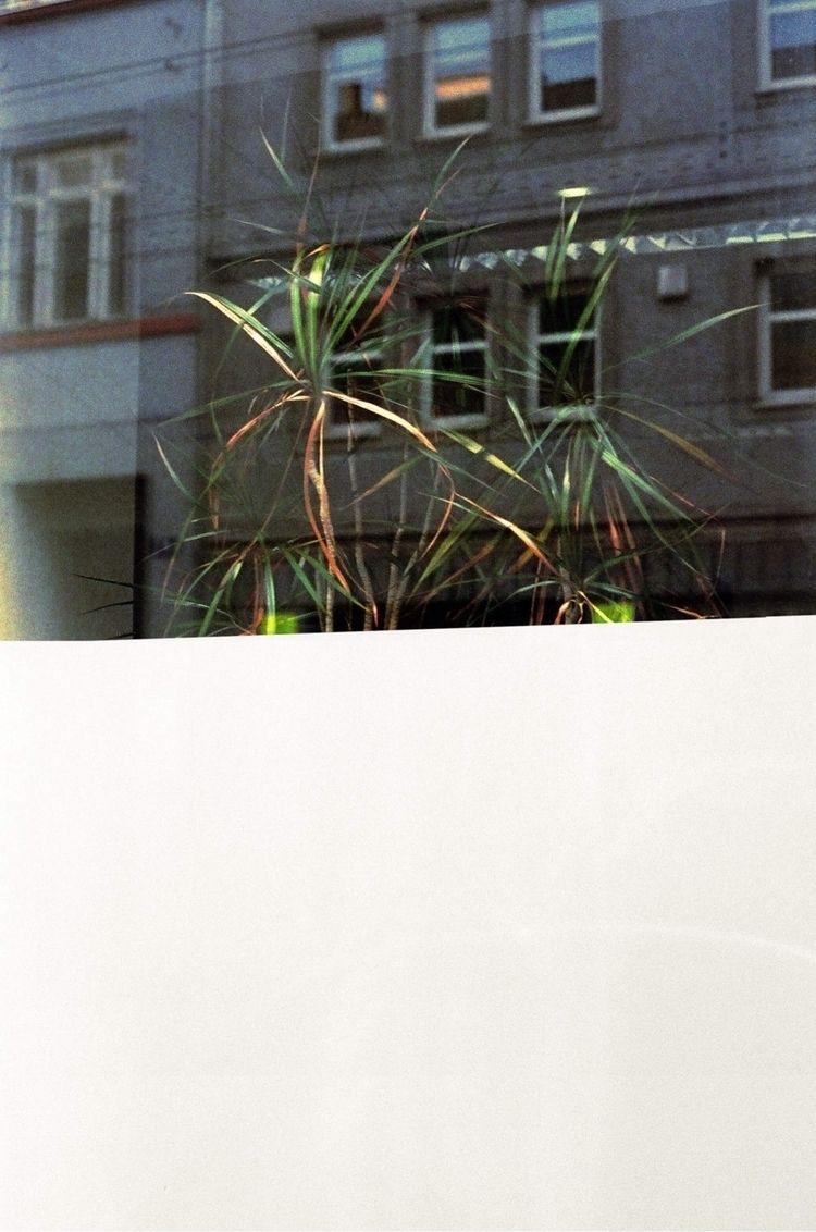 - Vienna - filmphotography, stilllife - ernestbaum | ello