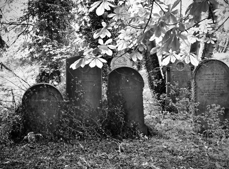 cemetry, grave, graveyard - alan0747 | ello