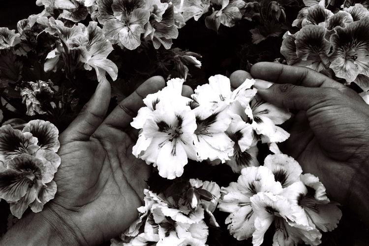 En mis manos - 35mm, film, analog - noeangelito | ello