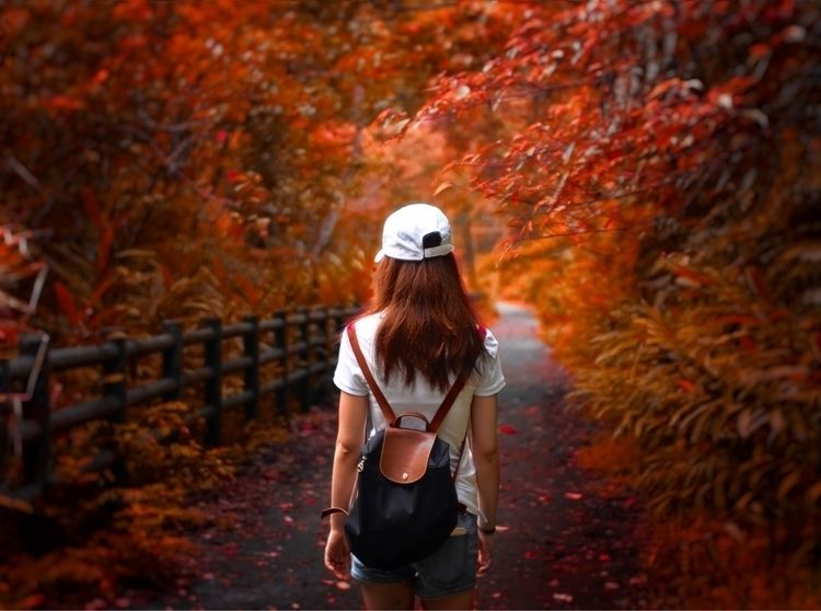 Walking Red Forest Path Taiwan - anlee | ello