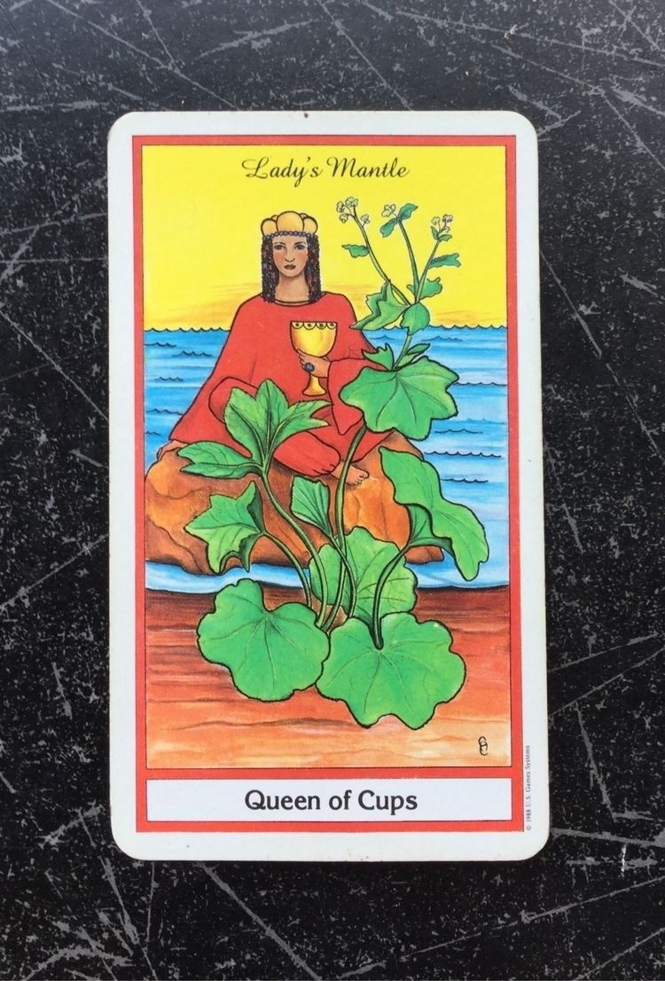 Card Day - Queen Cups keywords  - laurabalducci | ello