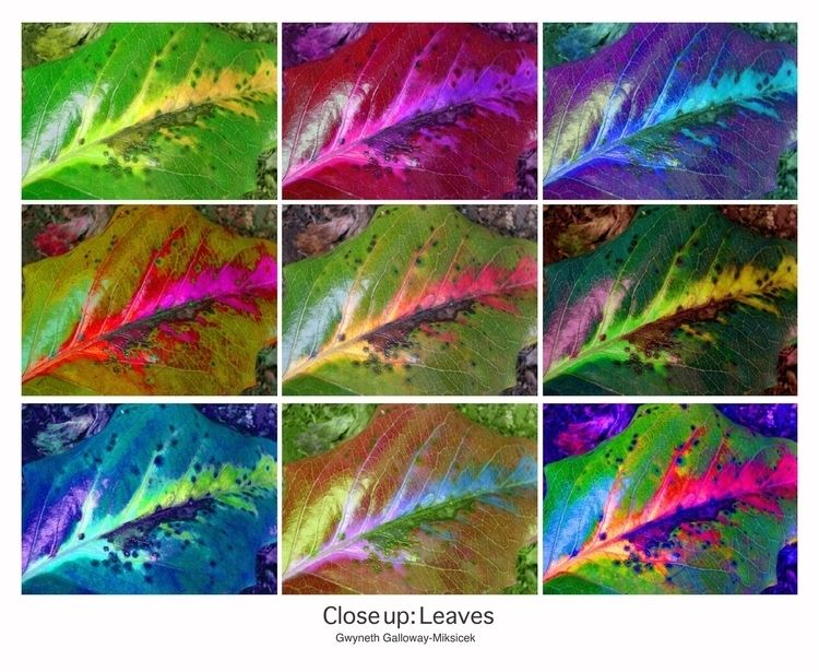 Digitally Manipulated Photo dau - ccruzme   ello