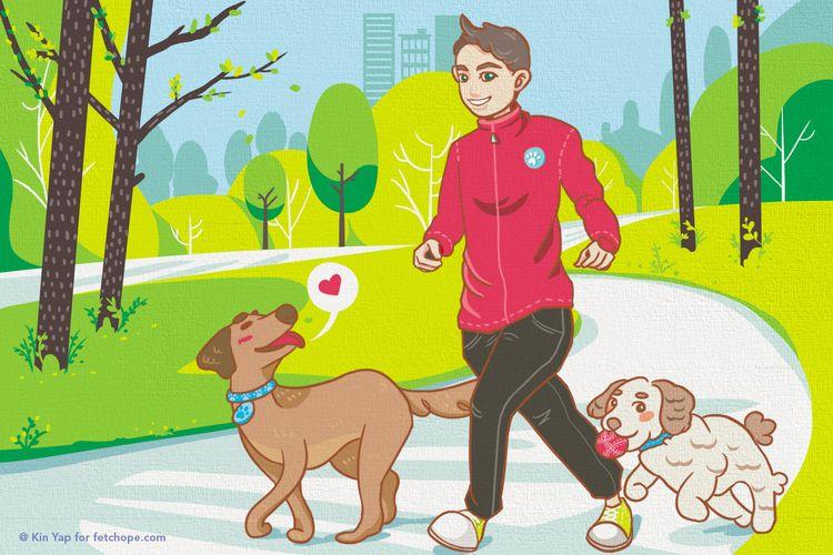 jogging, dogs - fetchope | ello