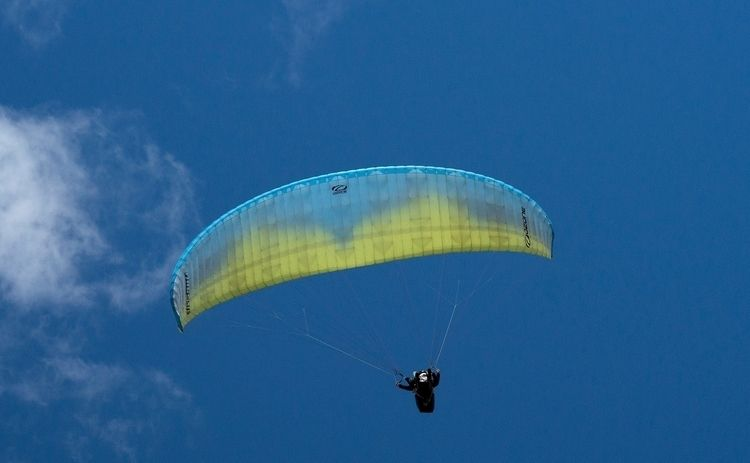 Coucou, vol au-dessus nid de ge - gclavet | ello