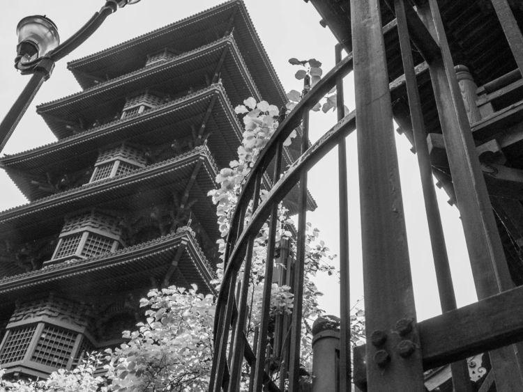 japanesetower, bwphotography - mylittleghost | ello