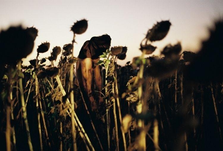 personal favorite shots - ello, ellophotography - metarslan | ello
