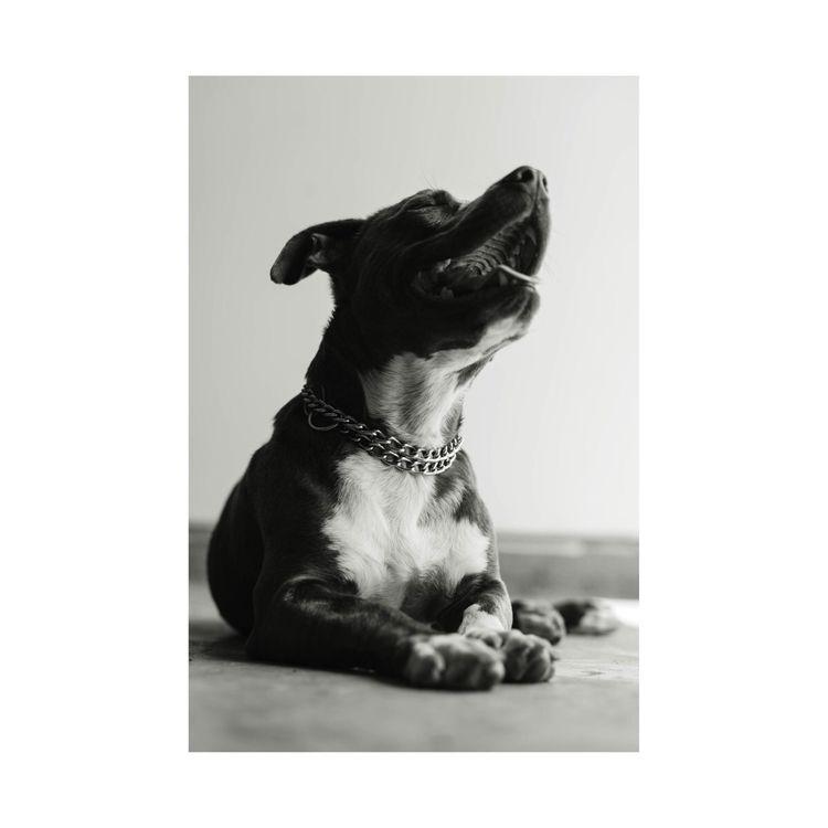 King character | IG: Fvrlit  - blackandwhitephotography - fvrlit | ello
