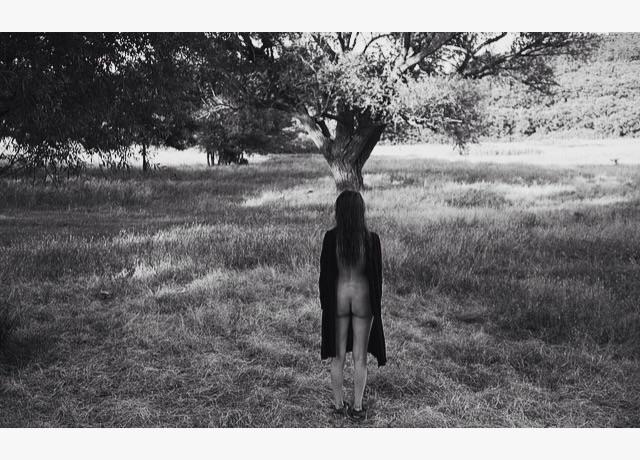 """Deep roots, flowers light.""-Th - kohananeptune | ello"