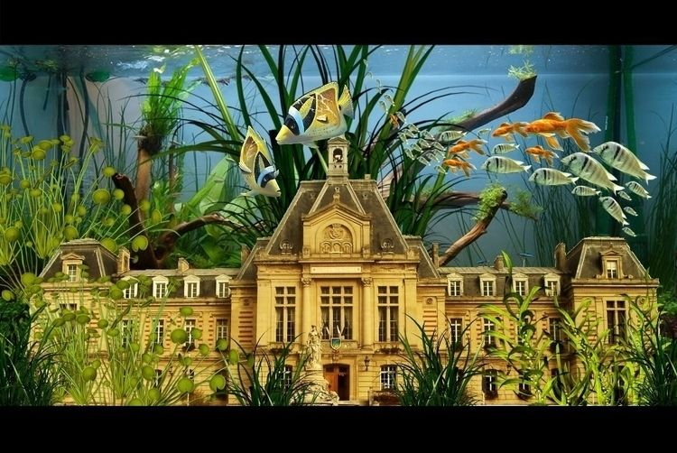 Evreux aquarium - cvprince | ello