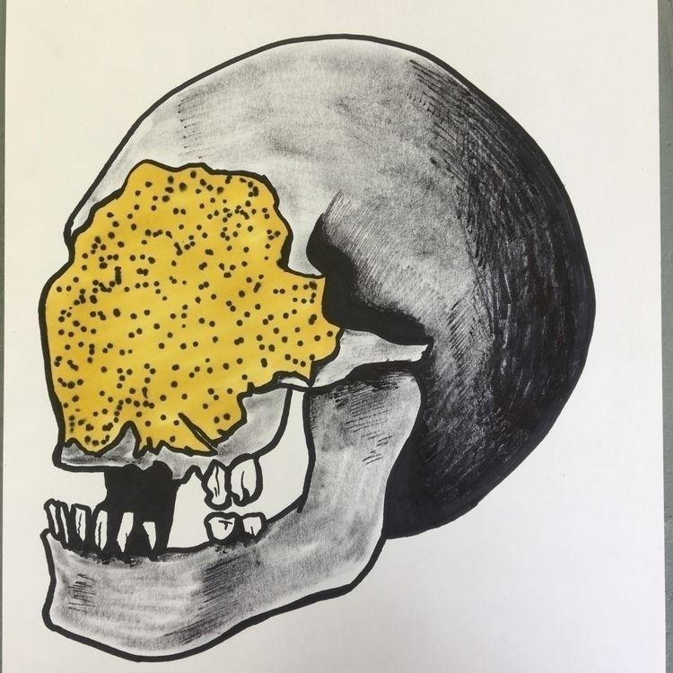 skulldrawing, skull, drawing - donorbrain | ello