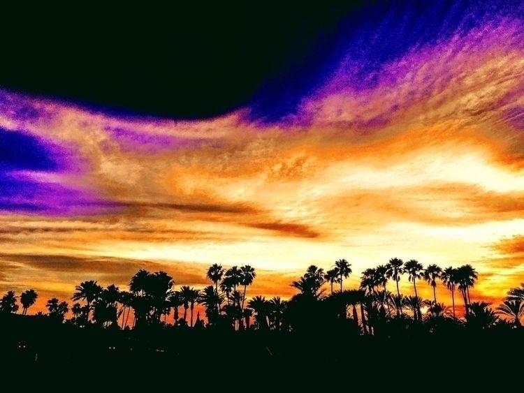 Coachella Music Arts Festival ~ - wellcaldmax   ello