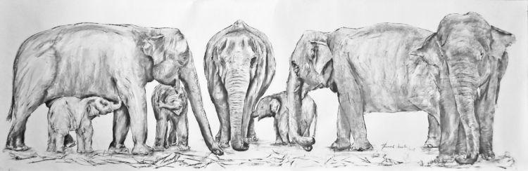 12 aug World elephants day 2018 - ben-peeters   ello