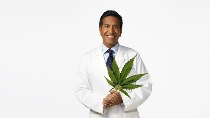 10 people fighting legalization - ellocannabis   ello