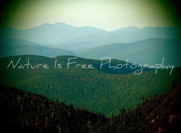 """Land art."" ~Andy Warhol - nature - natureisfree | ello"