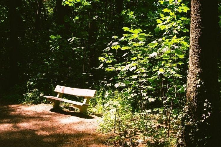 Visit portfolio - Photography, nature - mobilshots | ello
