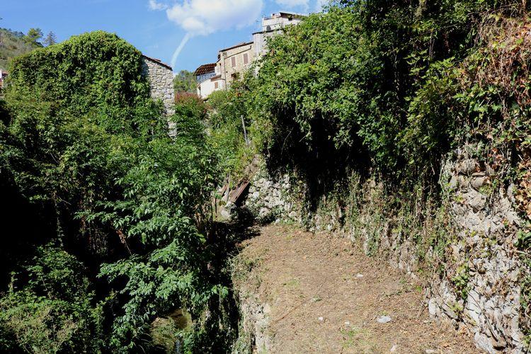 Olivetta San Michele (IM), Loca - adrianomaini | ello