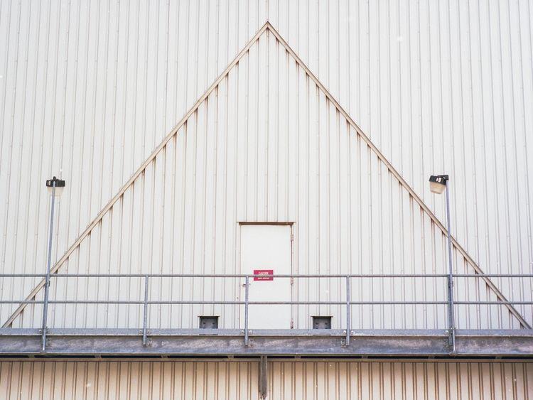 Triangulation  - ello, elloanalog - alaskapalms   ello