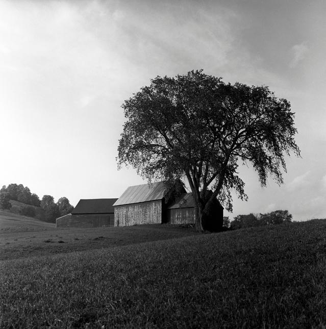 Vermont 1959 Red barn Monochrom - nickdewolfphotoarchive | ello