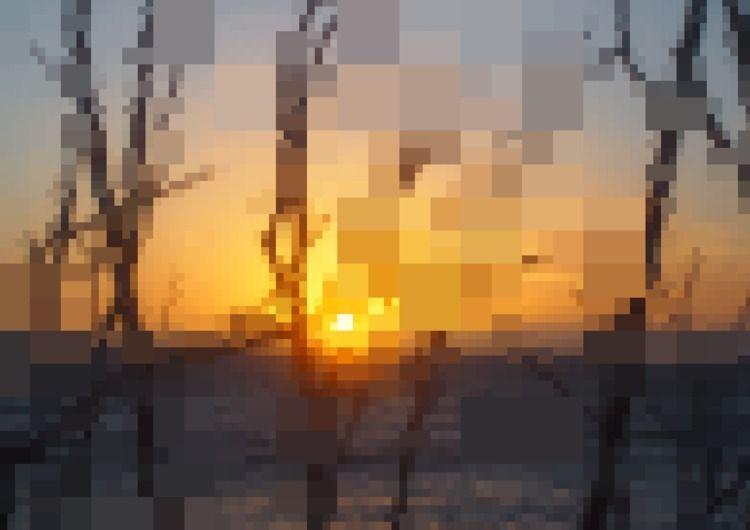 Wanna Part Sites - Limited Edit - theomurakami | ello