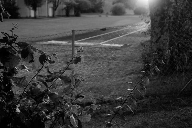 Die Forderung - photography, monochrome - marcushammerschmitt | ello
