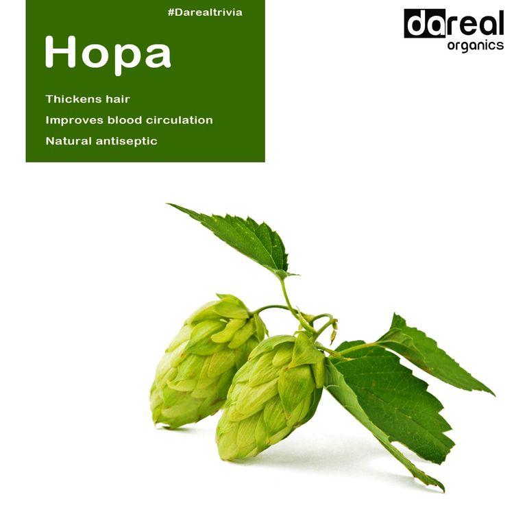 Benefits Hopa! keeping simple l - darealorganics | ello