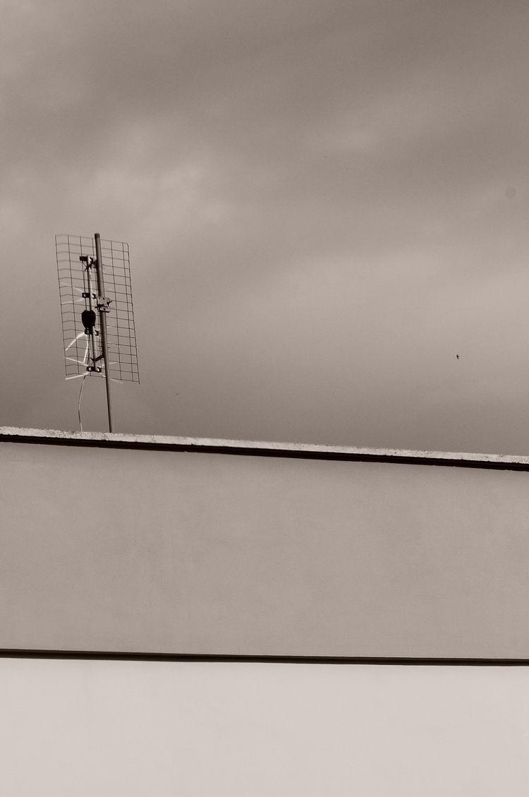 photography, nikon, sepia, minimal - shjizadurden | ello
