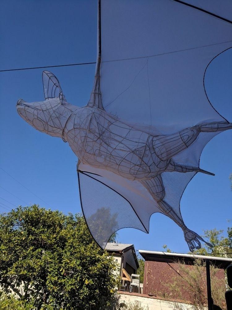 Mexican free tailed bat lantern - myklwells | ello