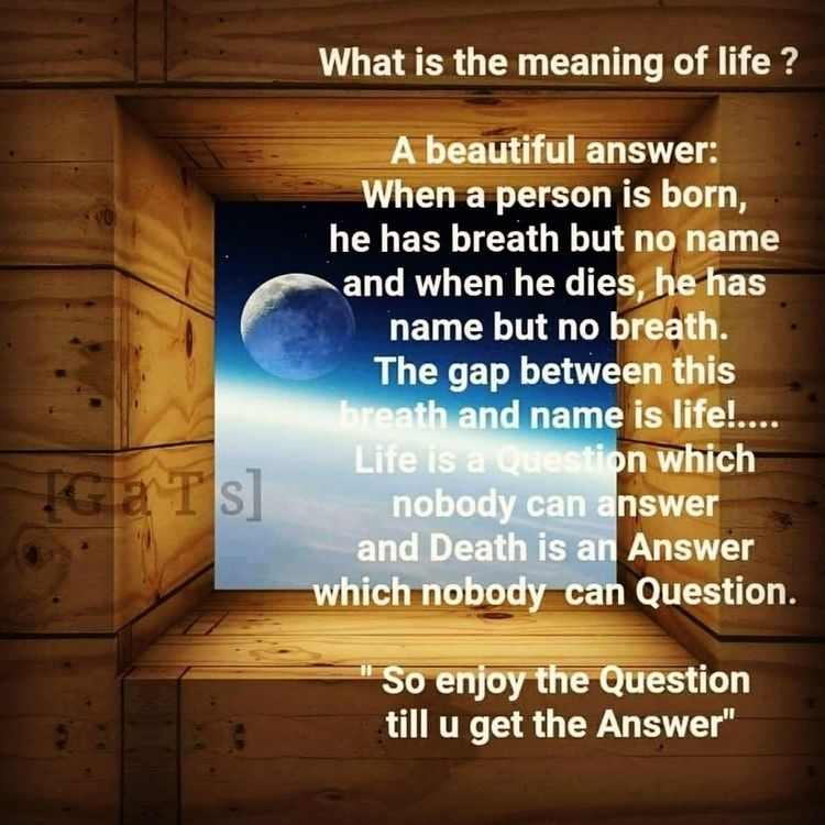 Live, day Life! Jonathan Swift~ - dare2bare | ello