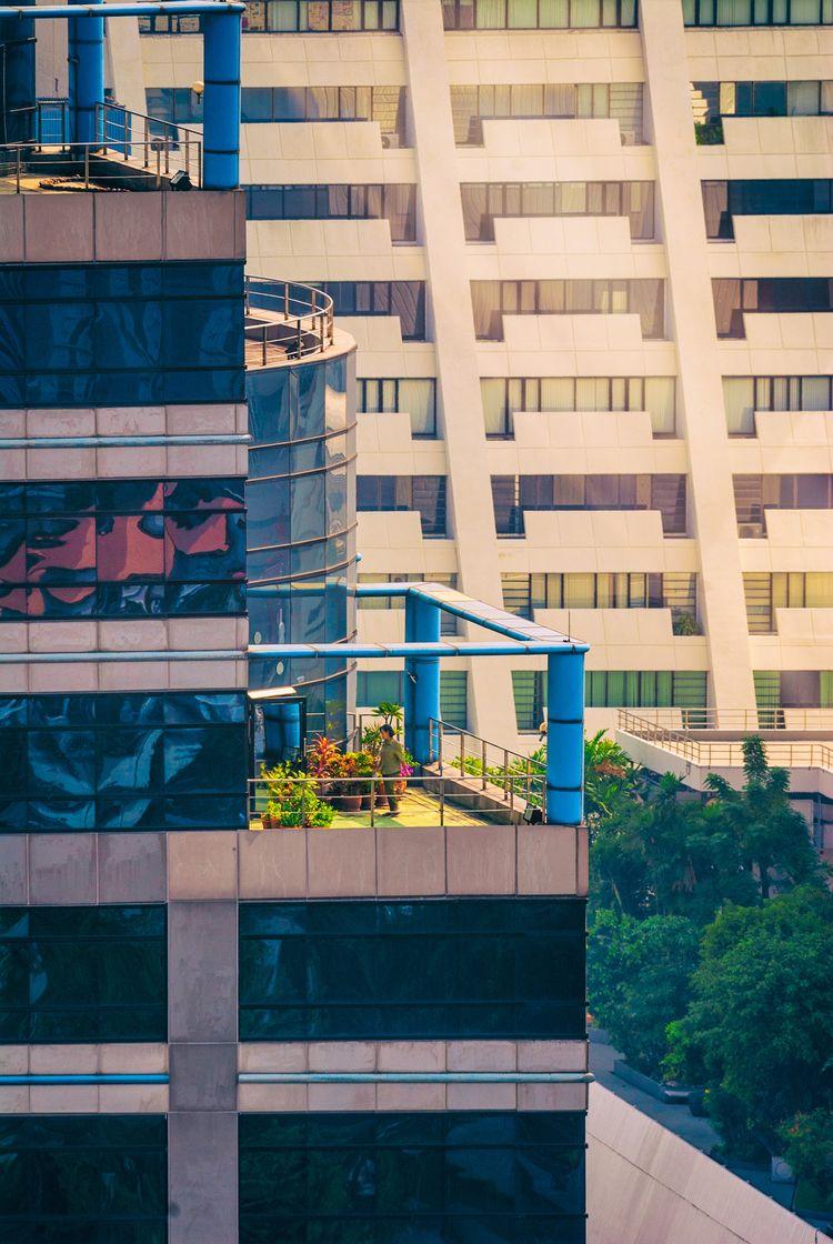 morning privilege gardener - Bangkok - christofkessemeier | ello