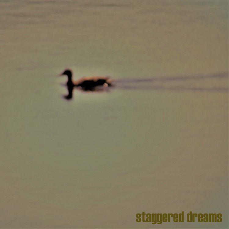 STAGGERED DREAMS fictitious cov - johnhopper | ello