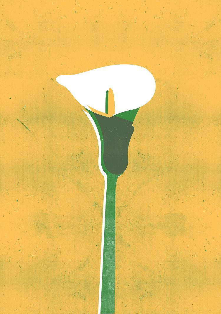 Floral design: calla lily - floraldesign - gastimo | ello