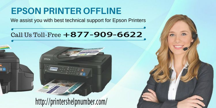 Epson printer Support reliable  - selenabliss | ello