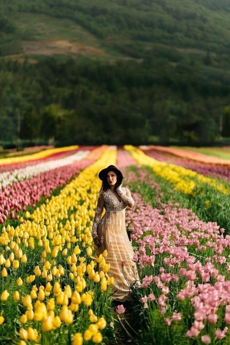 Tulips - flowers, portrait, portraitphotography - thelightpalette | ello