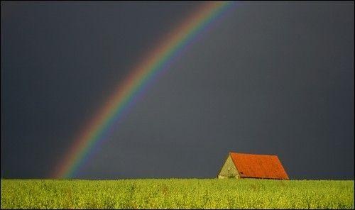trick seek shelter storm inspir - brianbaruch | ello