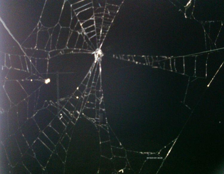 July 17th 2018 Spider web unedi - awesomesubt | ello