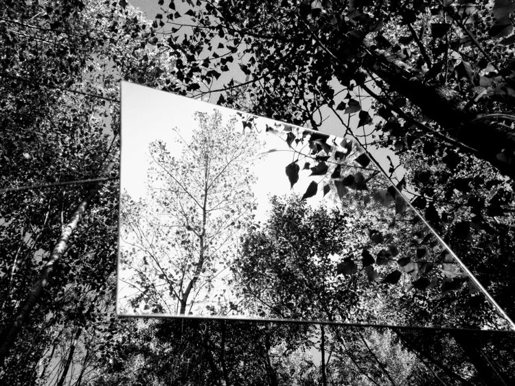 bw photos public art event Vien - yuliavolyntseva | ello