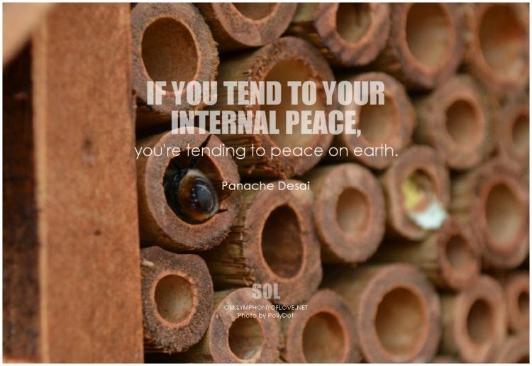 tend internal peace, tending pe - symphonyoflove | ello