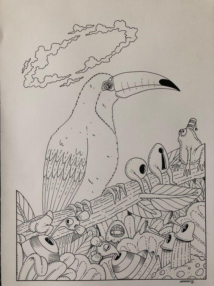 toucan, 1day1animal, art, illus - jimmy-draws | ello