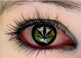 cool  - ellocannabis - lolosbri | ello