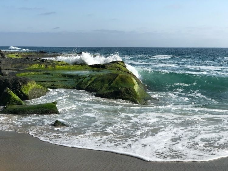 beach, nature, california, bestcoast - cliff-c-black | ello
