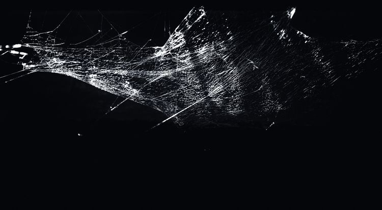 Installation - Spider - photoart - urbanart   ello