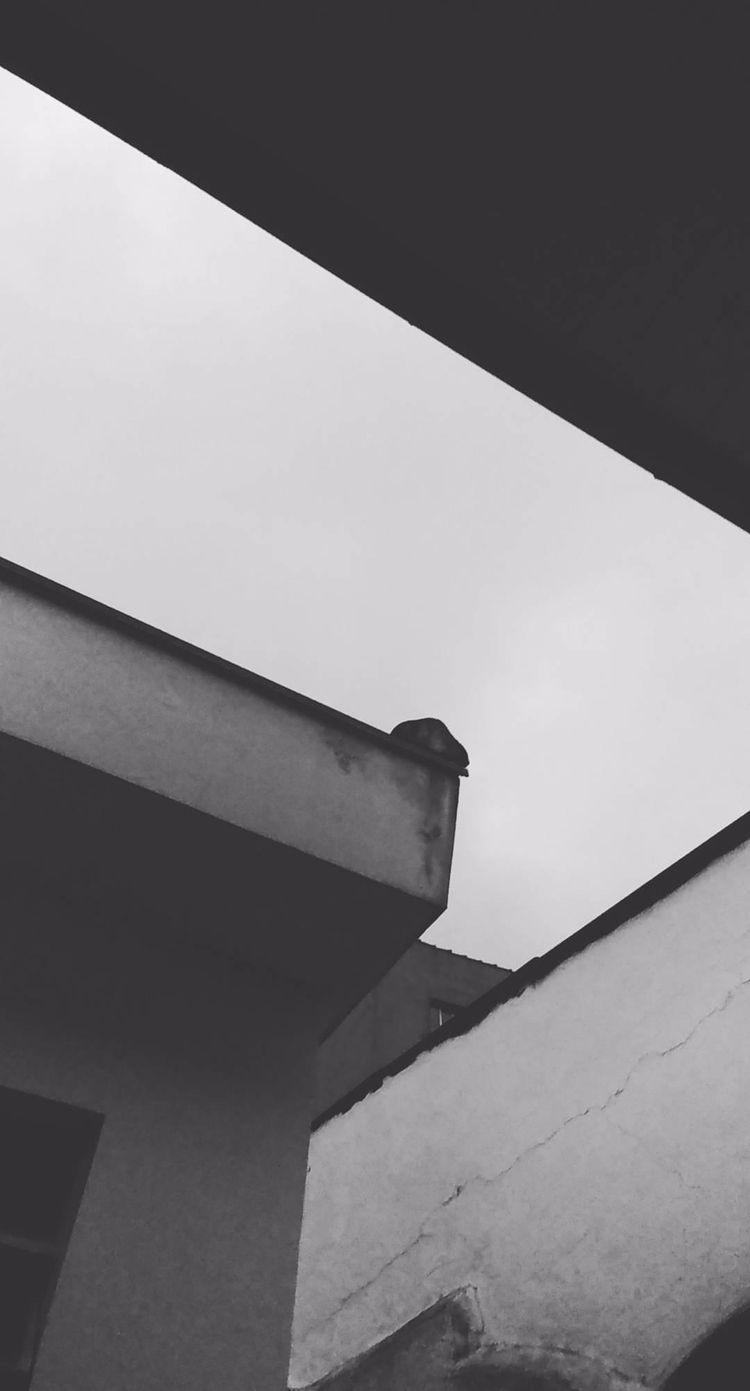 2017 / Sad Corners - lgg6, mobilephoto - anna-cheles | ello
