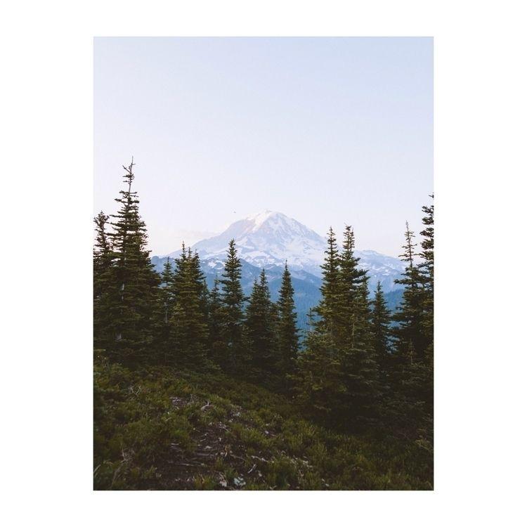 view Mt. Rainier - ivankosovan | ello