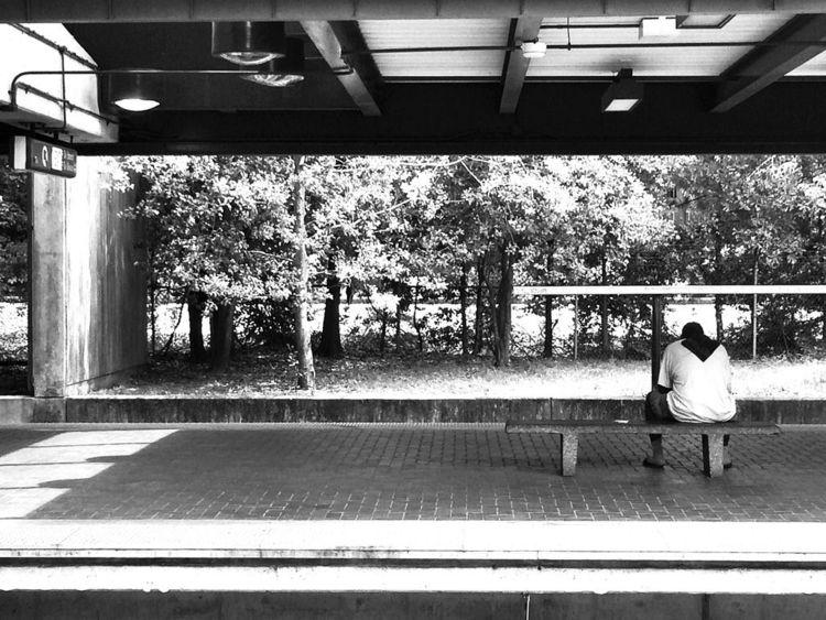 Eastbound - blackandwhite, sunlight - drewsview74 | ello