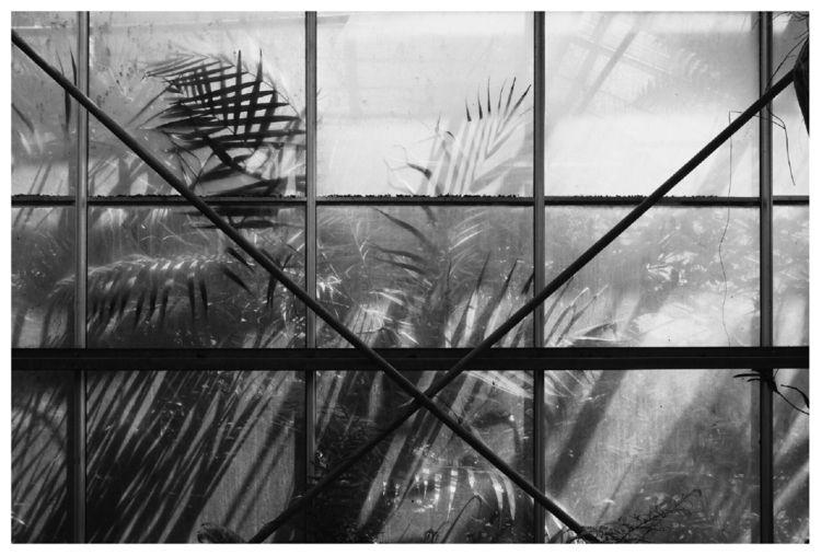 Jungle cage en - MurielleEtc - murielleetc | ello