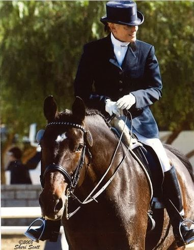 Shelley Browning riding entire  - shelleybrowningdressage | ello