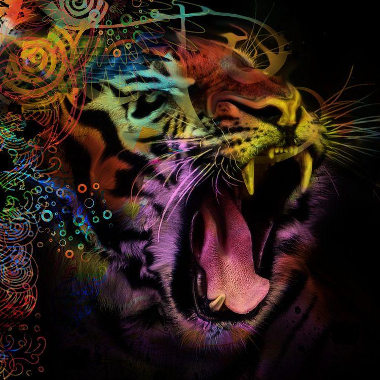 reworked version tiger iimages - lobber66 | ello