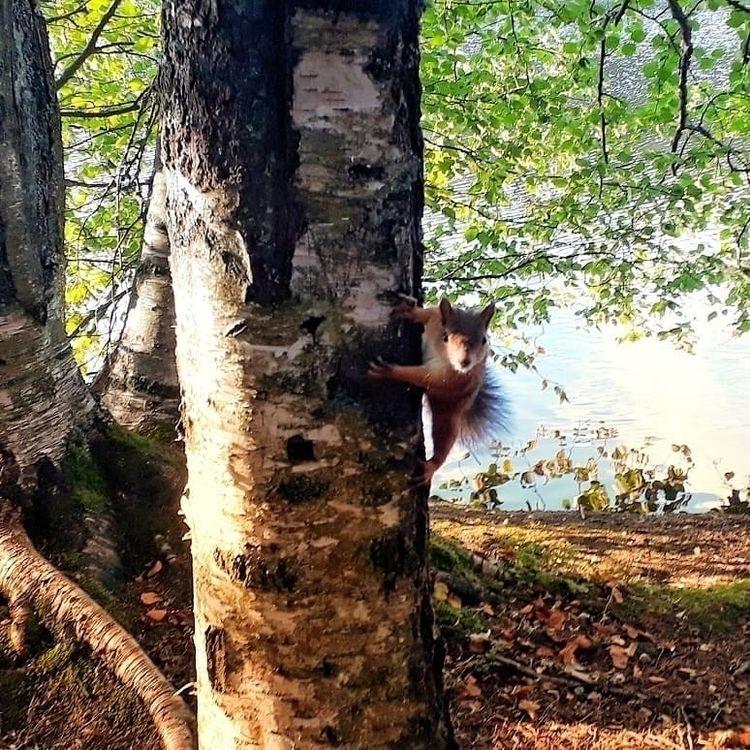 finland, Suomi, goodday, life - sakkeh1 | ello
