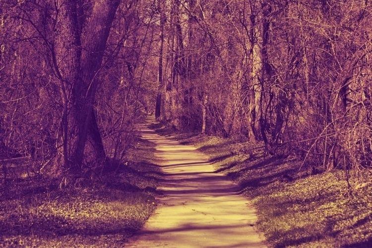 Path darkness bit purple pink W - tmphotographybaltimoree | ello