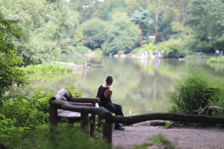 Pond View, Central Park, NYC gu - kevinrubin | ello